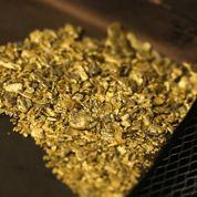 L'or retrouve sa fonction de valeur refuge, mais la hausse semble s'épuiser