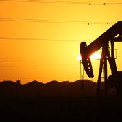 Après des années de vaches maigres, les majors pétrolières soignent leurs actionnaires