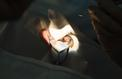 Mexique: un ver parasite découvert dans l'œil d'un adolescent