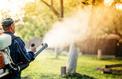 Les pesticides une nouvelle fois mis en cause dans la maladie de Parkinson