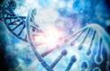 Génétique: mise en garde des autorités américaines contre un biohacker