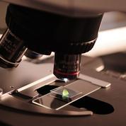 Les docteurs se dirigent de plus en plus vers la recherche privée