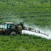 Glyphosate : l'UE reporte le vote sur le pesticide controversé