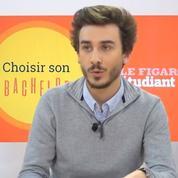 Bachelors en école de commerce: comment faire son choix?