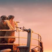 Les marmottes de France 3 jouent les stars