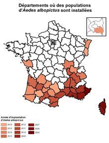 Le moustique tigre s'est propagé dans plus de 33 départements du sud de la France