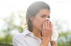 Comment passer sereinement le pic des pollens