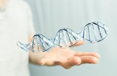 Les intenses batailles des couturiers de l'ADN