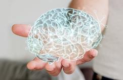 Des électrodes pour rendre le cerveau plus performant