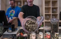 Légalisation du cannabis: le débat doit s'appuyer sur des données scientifiques