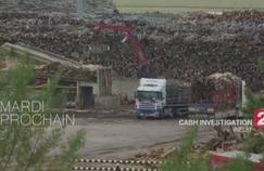 Programme TV : Cash Investigation passe l'industrie du bois sur le gril sur France 2