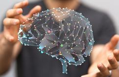 Comment le cerveau grandit avec l'âge