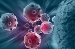 Le rôle complexe des cellules souches cancéreuses