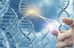 Thérapie génique : première modification de l'ADN chez l'homme par injection de virus