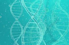 Cancer : un pas de plus vers un test sanguin de dépistage