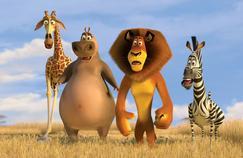 Le film à voir ce soir : Madagascar2