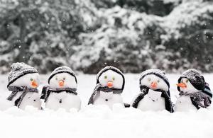 Conseils (argumentés) pour résister au froid