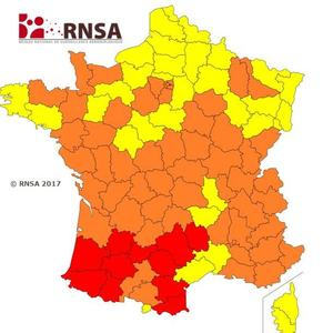 Carte de vigilance des pollens du RNSA valable jusqu'au 26 mai.