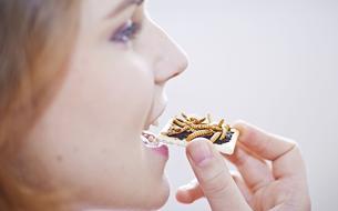 Les insectes sont-ils l'avenir de la santé de l'homme?