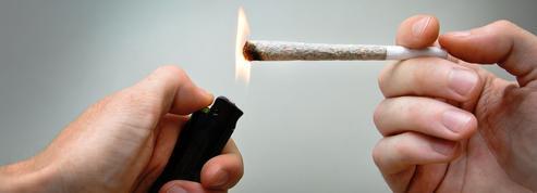 Cannabis: la rétine serait moins réactive chez les fumeurs réguliers
