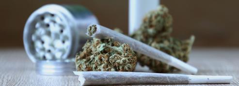 Effets du cannabis: les preuves scientifiques passées au crible