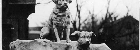 Il y a 117 ans... Le Figaro visitait le cimetière des chiens d'Asnières