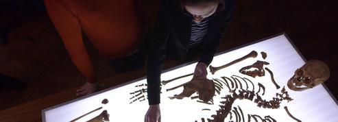 France 5 s'intéresse à la découverte et l'identification du squelette de Richard III