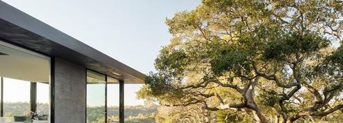 Une luxueuse villa où les arbres sont les vedettes