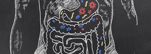 Fatigue chronique : et si nos bactéries intestinales y étaient pour quelque chose ?