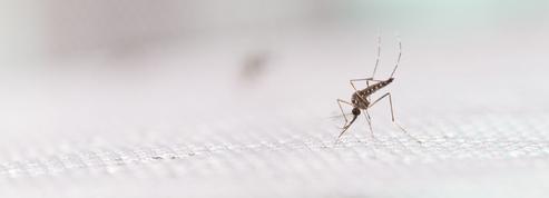 Aura-t-on un jour des vaccins contre les virus émergents?