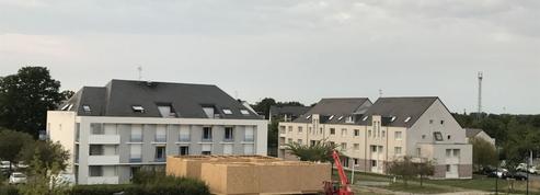 Déçus par leur chambre universitaire, ils construisent leur logement