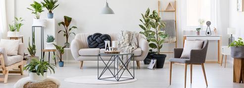 La location meublée est-elle toujours une bonne affaire?