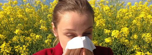 Le printemps arrive : gare aux allergies !