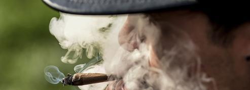 Le cannabis à l'adolescence accroît le risque psychotique
