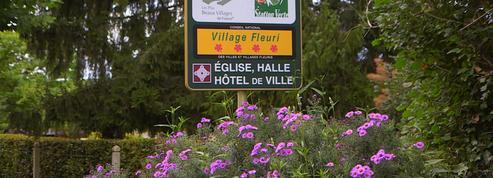 France 5 enquête sur l'enjeu du label Village fleuri pour les communes