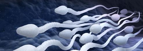 La santé reproductive des hommes se dégrade