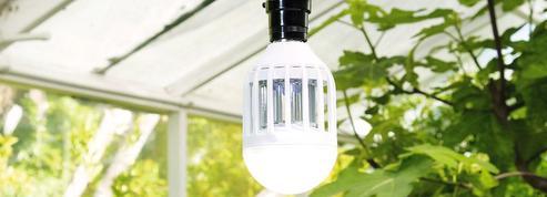 Nos essais : AMPOULE LED Barrière à insectes - Barzone... pas vraiment une lumière