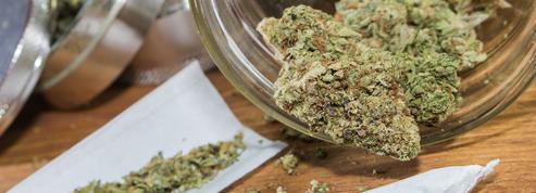 Les intoxications au cannabis chez les enfants ont triplé en 4 ans