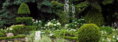 Un jardin paysager