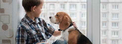 Le chien, une aide précieuse contre les troubles du langage