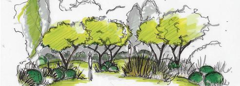 Les règles d'or des professionnels pour créer ou recréer un espace vert