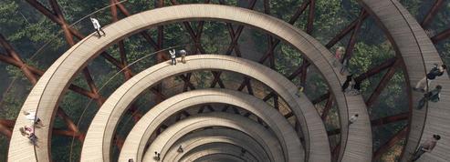 Découvrez cette tour d'observation en bois au cœur de la forêt