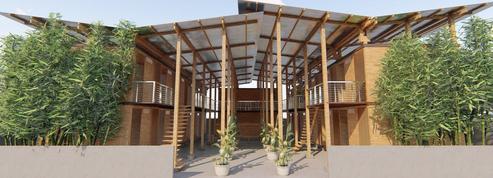Ces maisons low-cost en bambou seraient-elles l'avenir des villes ?