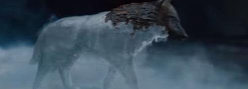 Game of Thrones :un teaser glacial avant la saison 8