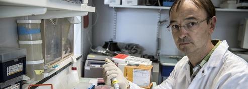 Ebola: détecter plus tôt le virus pour freiner l'épidémie