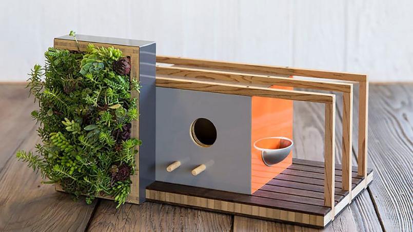 ces cabanes oiseaux sont presque de vraies maisons. Black Bedroom Furniture Sets. Home Design Ideas