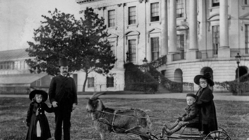 Dans les années 1890, le fils de Benjamin Harrison, Russell surveille les petits-enfants du président devant la Maison-Blanche.