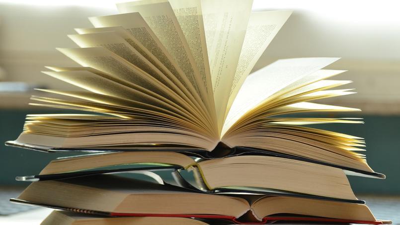 L'objet d'étude choisi pour cette année 2017 était poésie et quête de sens. Crédits