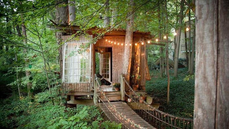 Cette cabane est la location la plus populaire sur Airbnb