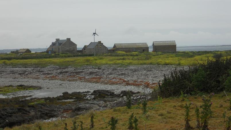 Les nouveaux occupants de l'îlot de Quéménès (Finistère) seront connus courant octobre